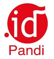 logo-pandi-b